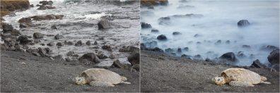 (Left) 1/60 sec; (Right) 20 sec — © Nicole S. Young (nicolesy.com)