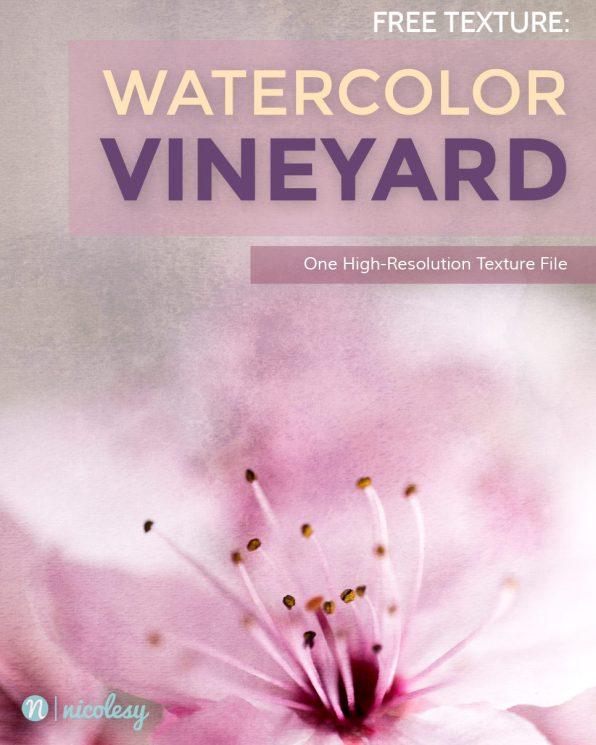 vineyard-cover