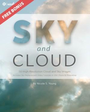 sky-cover-bonus