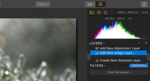 "Step 2: In the Layers panel, click the + icon and select ""Add new image layer"""