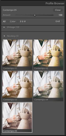 Lightroom Profile Browser