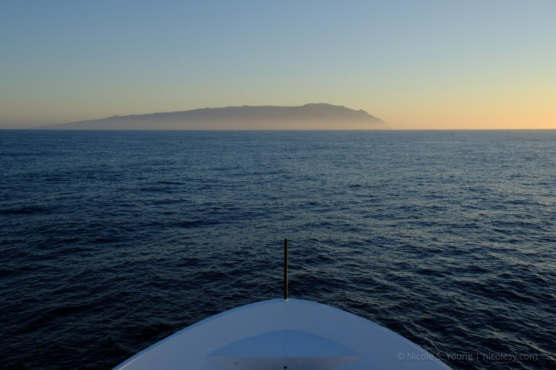 Guadalupe Island off in the distance. © Nicole S. Young — nicolesy.com