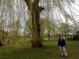 Pieterpad van Vierlingsbeek naar Swolgen (3)