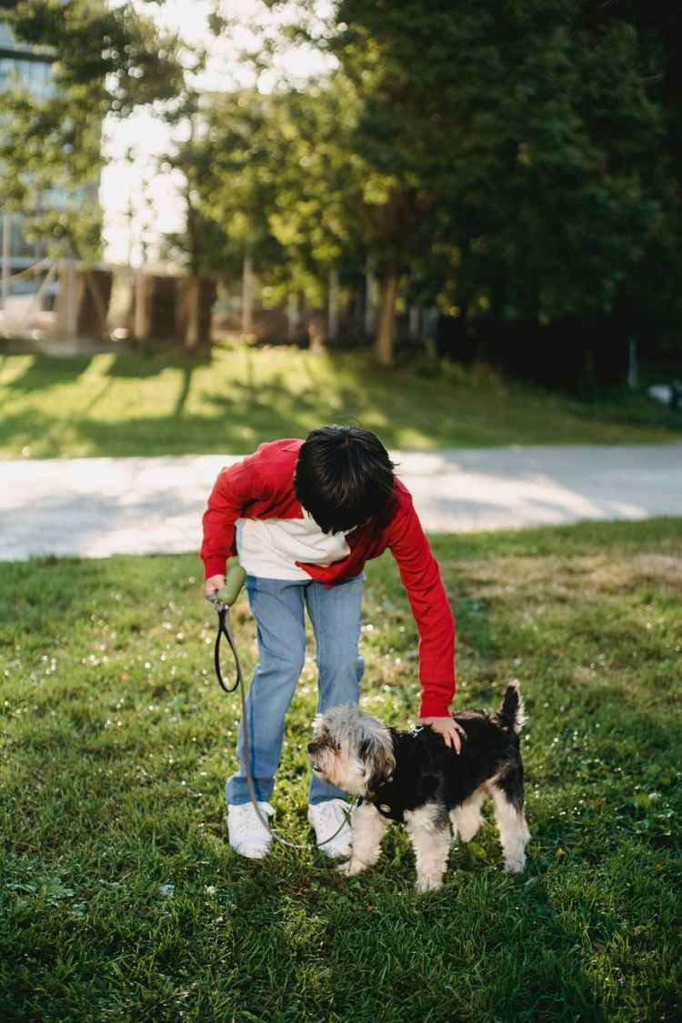 kid spending time with a dog in the park
