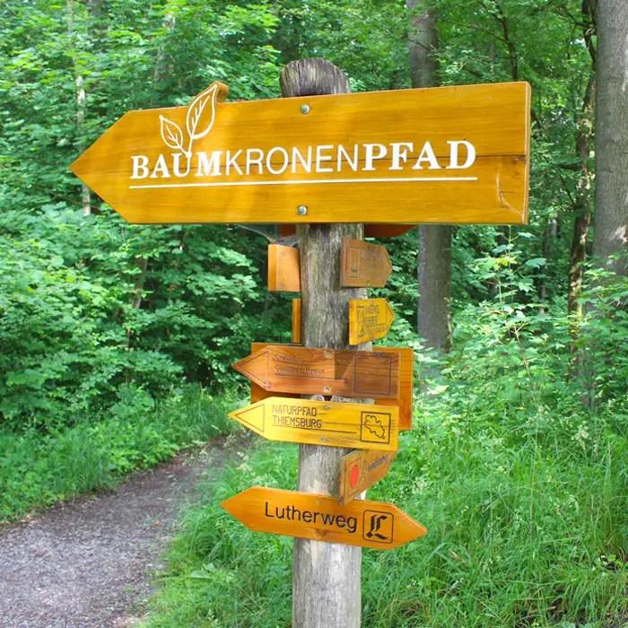 sehenswuerdigkeiten-muehlhausen-Unstrut-Hainich-thueringen-reisetipps-deutschland-unesco-welterbe-nationalpark-hainich-wanderrouten