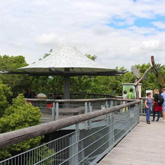 sehenswuerdigkeiten-muehlhausen-Unstrut-Hainich--thueringen-reisetipps-deutschland-unesco-welterbe-nationalpark-hainich-pavillon