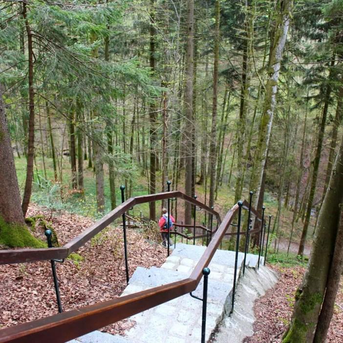 haubers-alpenresort-oberstaufen-allgaeu-bayern-hoteltipp-deutschland-klimapfad-waldtreppe-oben