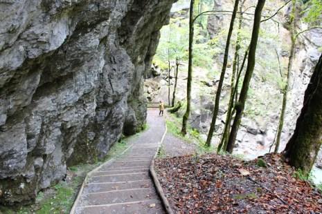 sehenswuerdigkeiten-dornbirn-reisetipps-vorarlberg-reisetipps-oesterreich-rappenlochschlucht-holzweg