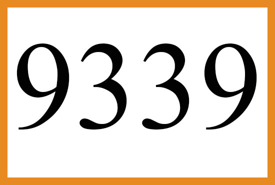 9339のエンジェルナンバーの意味について