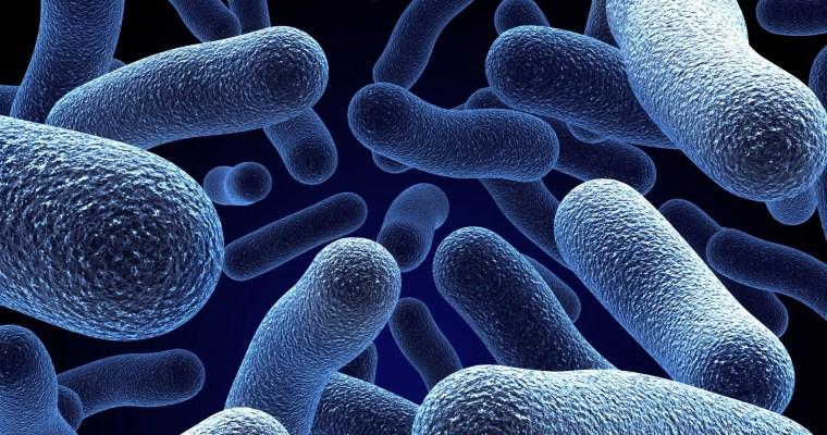 J'aime les microbes !