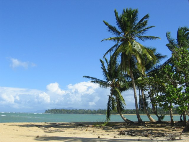 Playa Las Terrenas