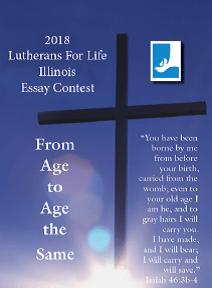 Dividends for life essay contest