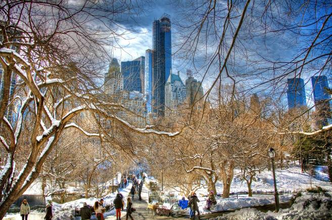 Central Park im Winter