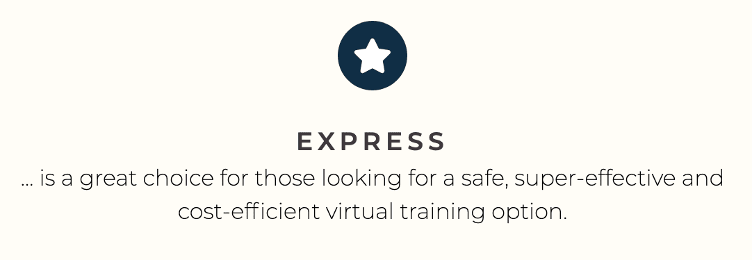 VIRTUAL TRAINING INTRO PACK (6 Express 40-minute sessions)
