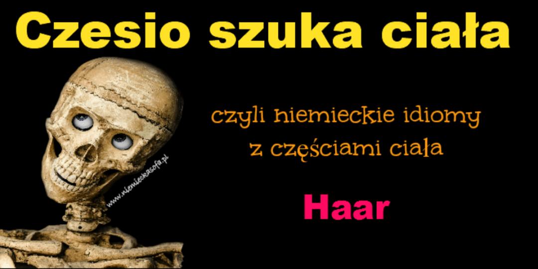 czesioszukaciala-haar