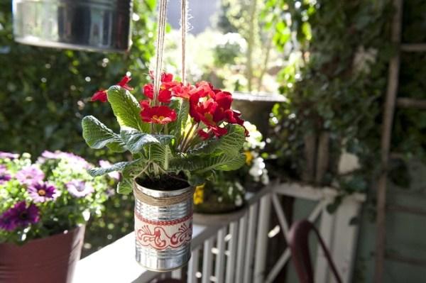 Wiszące doniczki tooszczędność miejsca namałym balkonie. Fot.Flower Council of Holland/thejoyofplants.co.uk