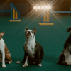 Super Bowl commercials 2019