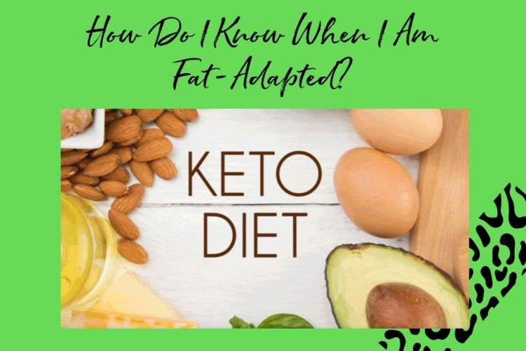 how do I know when I am fat-adapted