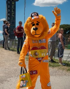 Lion suited fan of Max Verstappen on the Friday