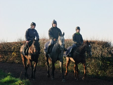 On the gallops at Thorne Farm Racing, Stoodleigh, Devon