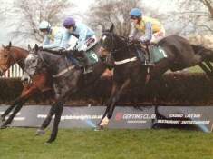 Master Neo Thorne Farm Racing blog