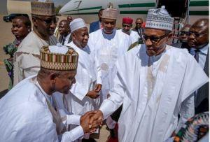 President Buhari Hands Over Dangote's Daughter in Marriage for N500,000 Brideprice