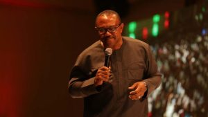 Ohanaeze Mocks Igbo Presidential Candidates, Backs Peter Obi