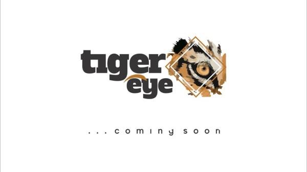 Tiger eye Journal