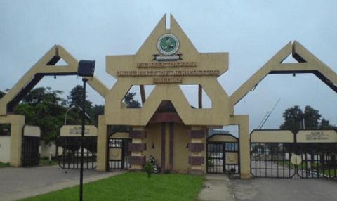 Michael Okpara University, Umudike