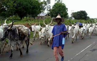 Fulani-herdsmen1-696x441