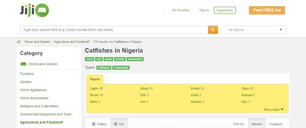 catfish in nigeria3