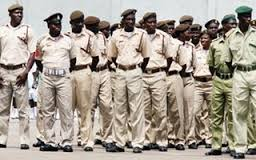 Operational Structure of the Nigeria Immigration Service