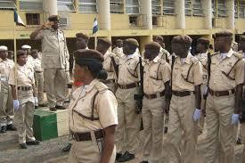nigerian immigration salary ranks