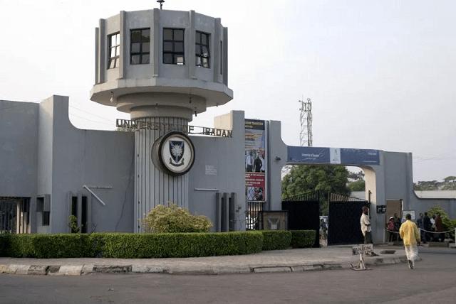 university of ibadan school fees