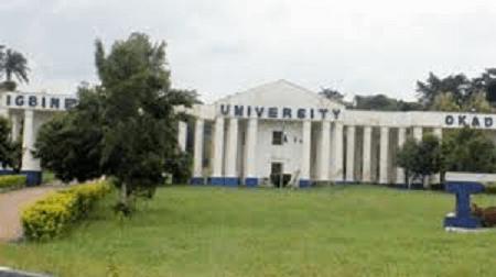 igbinedion university school fees