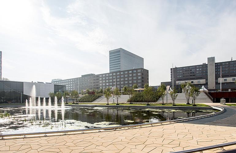 rotterdam-school-of-management