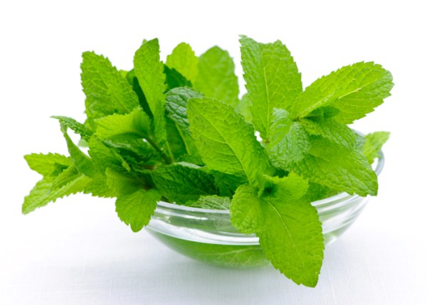 mint for smooth skin