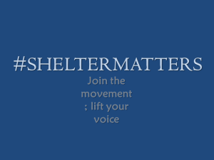 shelter matters