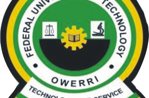 Land speculators distorting FUTO masterplan — VC