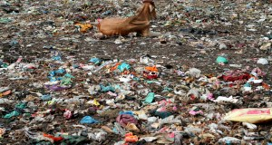 'Effective waste management crucial for sustainable development'