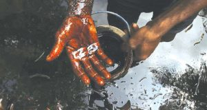 Amnesty, others seek cleanup of Ogoni polluted sites