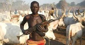 herdsmen attack