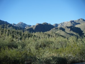 The Catalina Mountains (c) ABR
