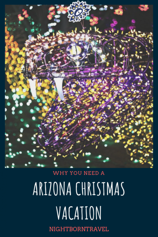 Arizona Christmas Vacation