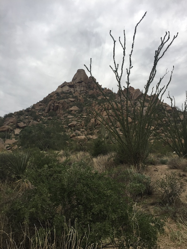 pinnacle peak hike