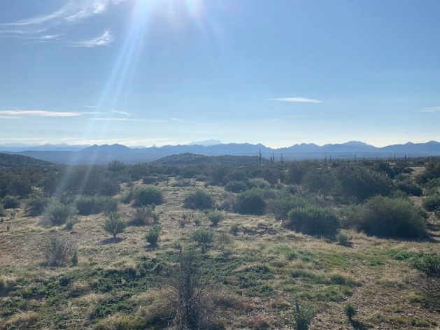 McDowell Mountain Regional Park Hiking