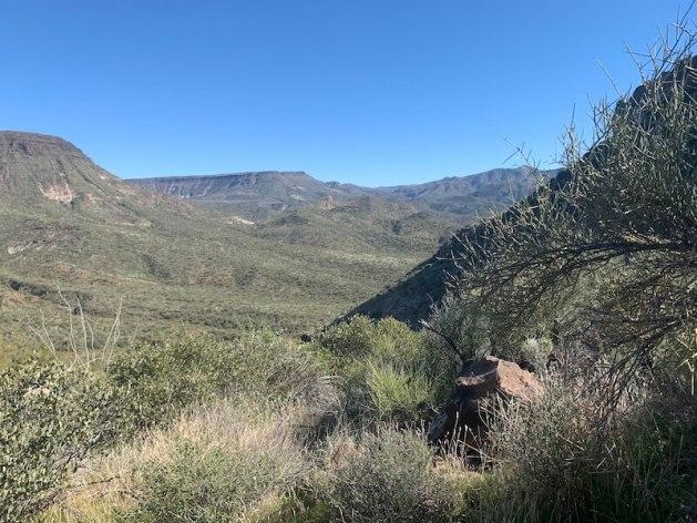 elephant mountain loop trail