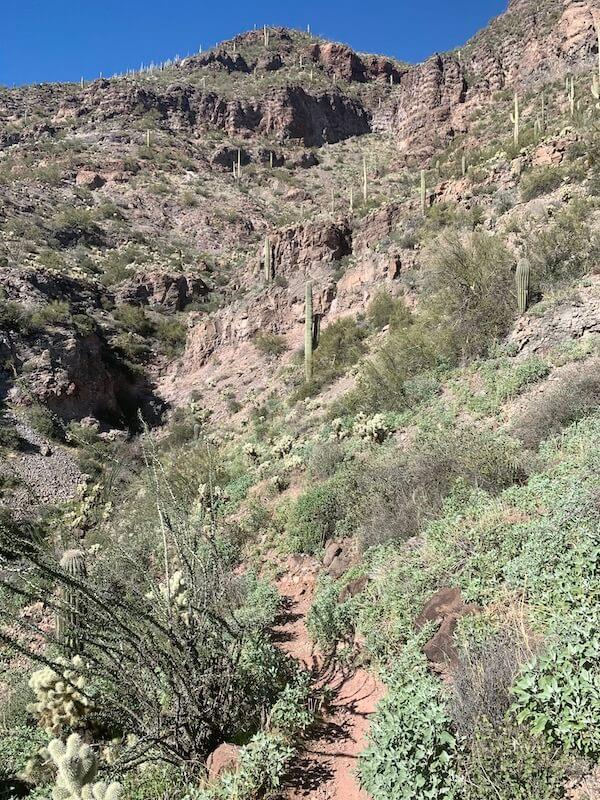 bear mountain loop trail
