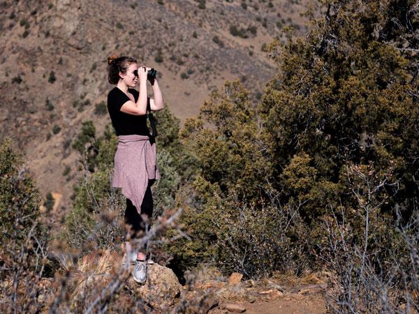 Mollee Birding