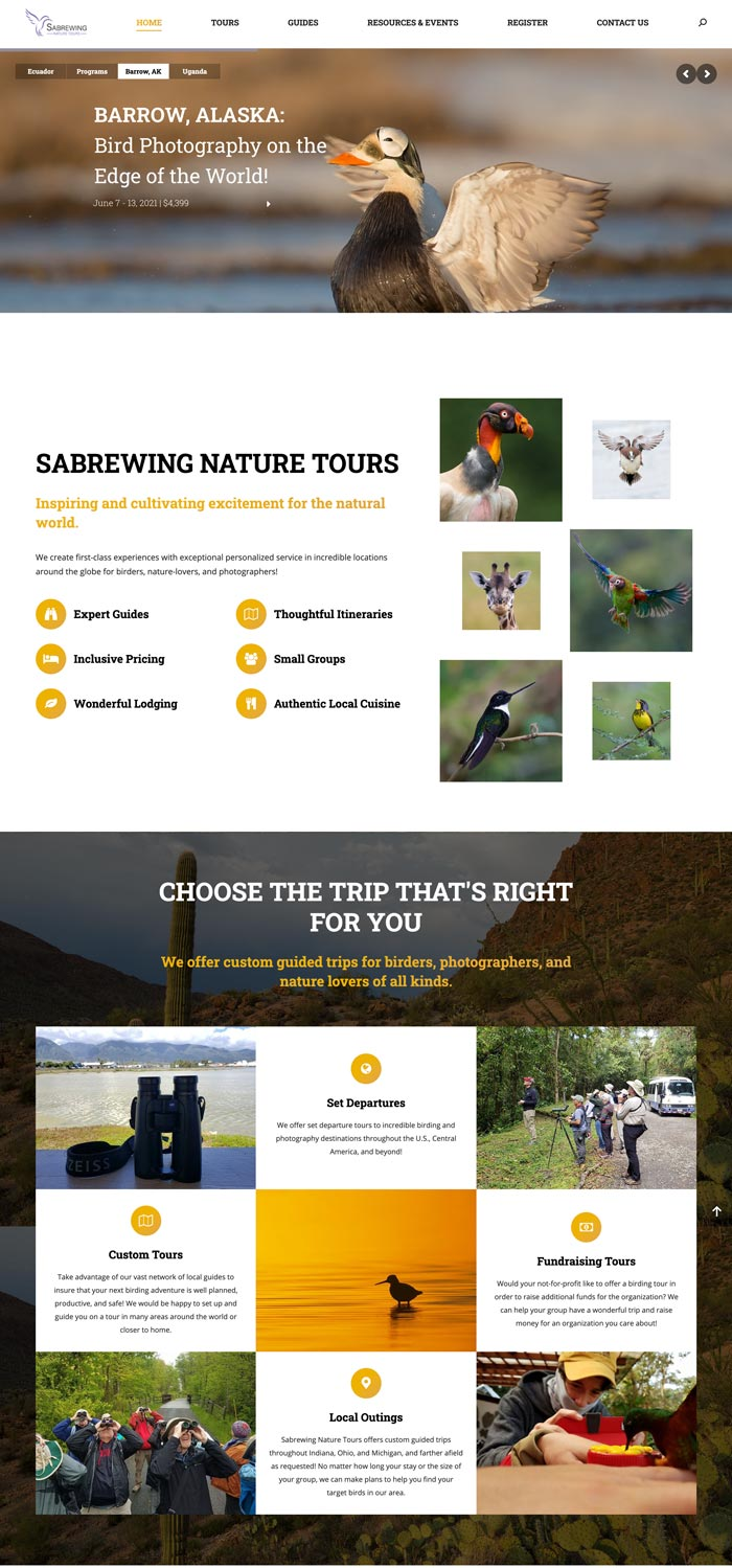 Sabrewing Home Page